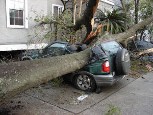 car_sliced_by_a_tree_downed_by_a_tornado
